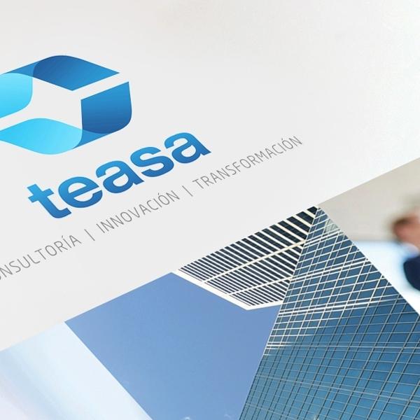 CONSULTANCY | TEASA